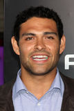 Mark Sanchez Royalty Free Stock Image
