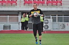 Mark Schwarzer Stock Images