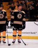 Mark Stuart Boston Bruins. Royalty Free Stock Photo