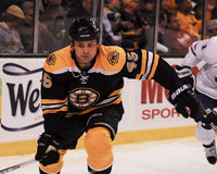 Mark Stuart Boston Bruins. Royalty Free Stock Photo