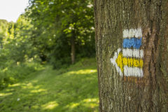 Mark on a tree indicating the direction. Of the way Stock Image