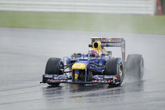Mark webber, red bull F1 Royalty Free Stock Images