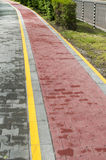 Marked bicycle path Stock Photo