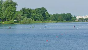 Marked trails to the lake for rowers. Jarun stock video
