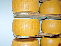 The marked wheels of cheese Stock Images