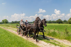 MARKELO, NETHERLANDS - JUNE 3, 2016:Traditional Dutch carriage. Two older man in a traditional Dutch carriage  with two black Frisian horse in agricultural area Stock Image