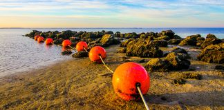Marker Buoys at low tide royalty free stock image