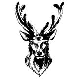 Marker hand-drawn forest animals: deer Royalty Free Stock Images