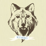 Marker hand-drawn forest animals: wolf Stock Images