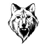 Marker hand-drawn forest animals: wolf Stock Photography