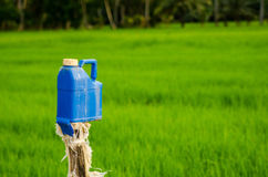 Marker. Plastic bottle used for marking territory in the rice field Stock Photo