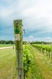 Marker at vineyard Stock Photo