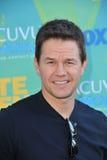 Markera Wahlberg royaltyfri fotografi
