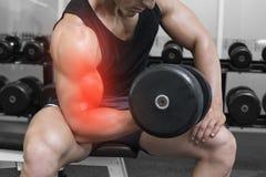 Markerad arm av lyftande vikter för stark man fotografering för bildbyråer