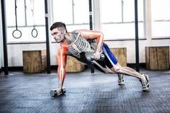 Markerad kropp av lyftande vikter för stark man på idrottshallen Arkivfoto