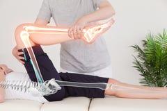 Markerade ben av kvinnan på fysioterapeuten royaltyfri foto