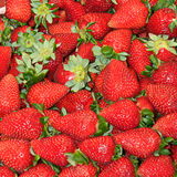 Market. Strawberry background in a market Royalty Free Stock Photos