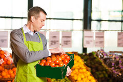 Market assistant holding box of tomatoes stock images