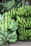 Market Bananas. Taken in a market in the Dominican republic. shows green bananas and Plantains Royalty Free Stock Images