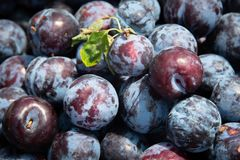 Fresh healthy fruits royalty free stock photography