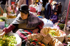 Market, Bolivia. Woman selling vegetables on the market in La Paz, Bolivia Stock Photo