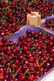 On the market, Cherry is good food Stock Photography