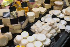 Market counter with fresh cheese kinds Royalty Free Stock Photography