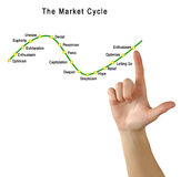 The Market Cycle. Presenting graph of  Market Cycle Stock Photography