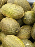 Market day. Fresh melons on a street market Royalty Free Stock Image