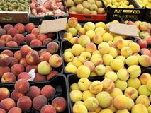Market day. Fresh peaches on a street market Royalty Free Stock Photo