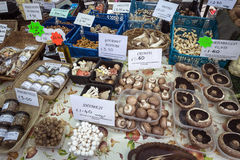 Market Day - Malton - Yorkshire - England. Market stall selling mushrooms on market day in the busy North Yorkshire town of Malton in northeast England Stock Photo