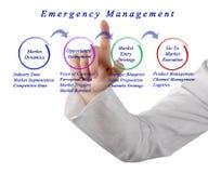 Market Entry Management royalty free stock image