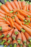 Market Fresh Carrots, Nepal Royalty Free Stock Image