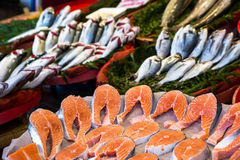 Market with fresh fish. Mussels and crabs Stock Photos