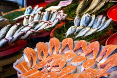Market with fresh fish. Mussels and crabs Royalty Free Stock Photos