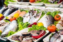 Market with fresh fish. Mussels and crabs Royalty Free Stock Photo