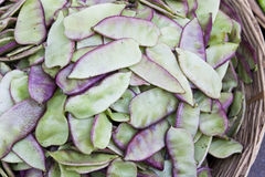 Market Fresh Hyacinth Beans, Nepal Royalty Free Stock Image