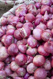 Market Fresh Onions, Nepal Stock Photos