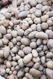 Market Fresh Potatoes, Nepal Stock Photos