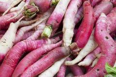 Market Fresh Radishes, Nepal. Image of fresh radishes sold at Kathmandu's street market, Nepal Stock Image