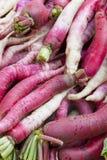 Market Fresh Radishes, Nepal. Image of fresh radishes sold at Kathmandu's street market, Nepal Royalty Free Stock Images