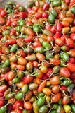 Market Fresh Small Capsicums, Nepal Royalty Free Stock Photos