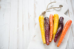 Market fresh vibrant colorful carrots Stock Images