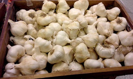 Market: Garlic Cloves Royalty Free Stock Images