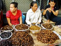 Market Insects. Vendors selling fried insects at the Central Market in Phnom Penh, Cambodia Stock Photo