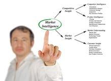 Market Intelligence royalty free stock images