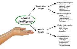 Market Intelligence. Presenting Diagram of Market Intelligence Stock Images