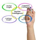 Market Intelligence. Presenting diagram of Market Intelligence Royalty Free Stock Photo