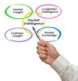 Market Intelligence. Presenting diagram of Market Intelligence Stock Photos