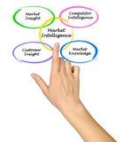 Market Intelligence. Presenting diagram of Market Intelligence Stock Image